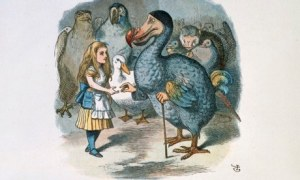 When it comes to psychotherapy techniques, there are winners and losers – contrary to what the dodo told Alice. Illustration: John Tenniel/The Bodleian Library